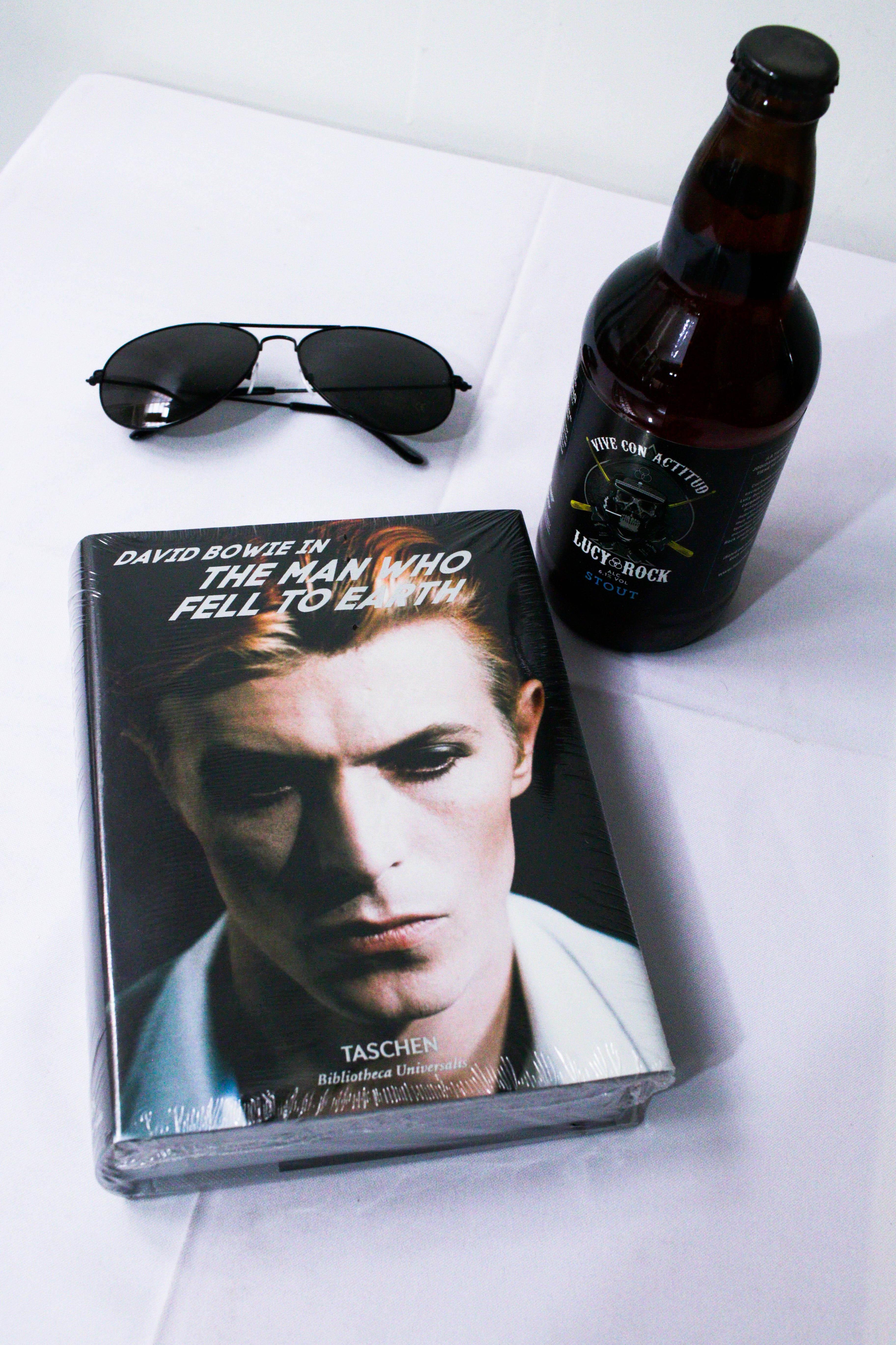 David Bowie, The Man Who Fell To Earth de Jean-Michel Guesdon