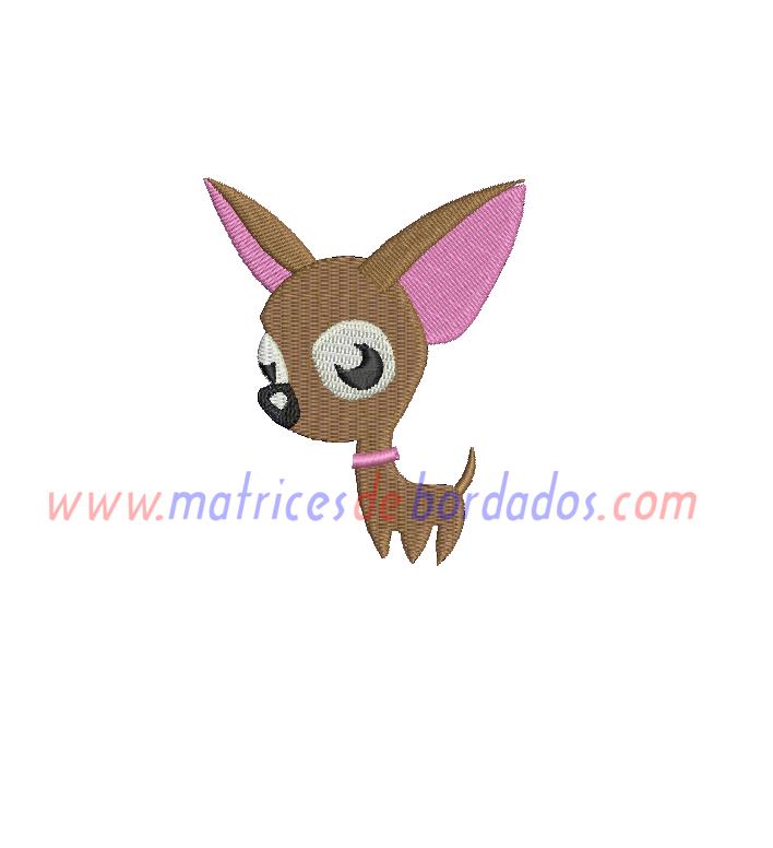 TM27MZ - Chihuahua