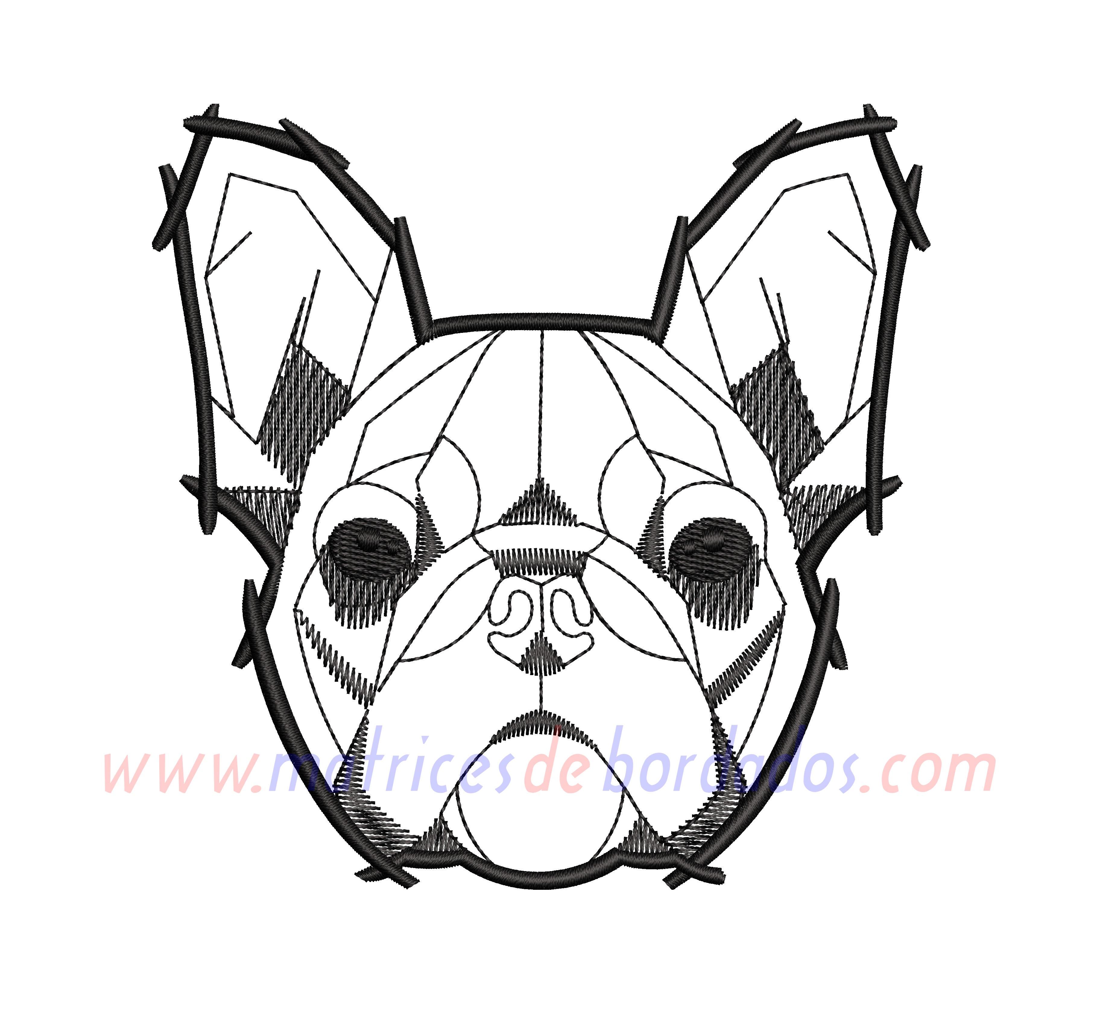 QQ53VB - French Bulldog