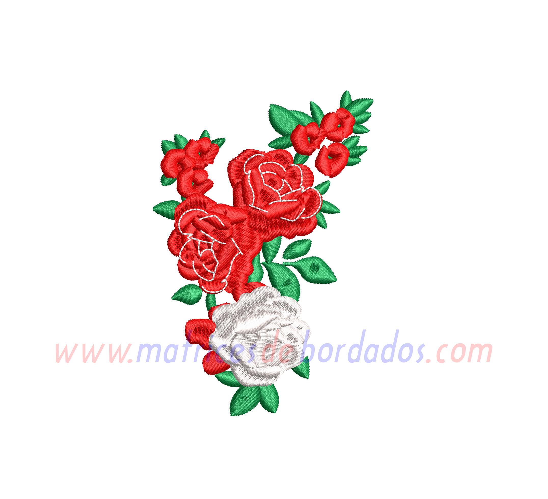 UN17DZ - Rosas