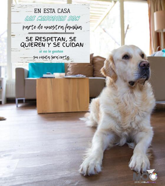 """Cuadro de Madera 40x30 """"Mascotas"""""""