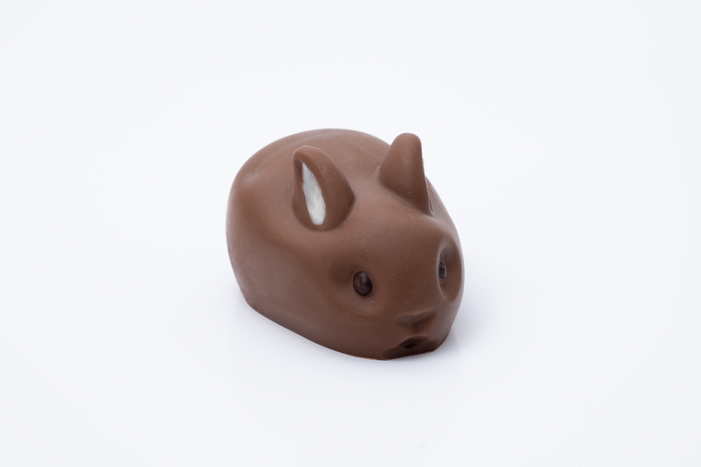 Conejo gordo 3D