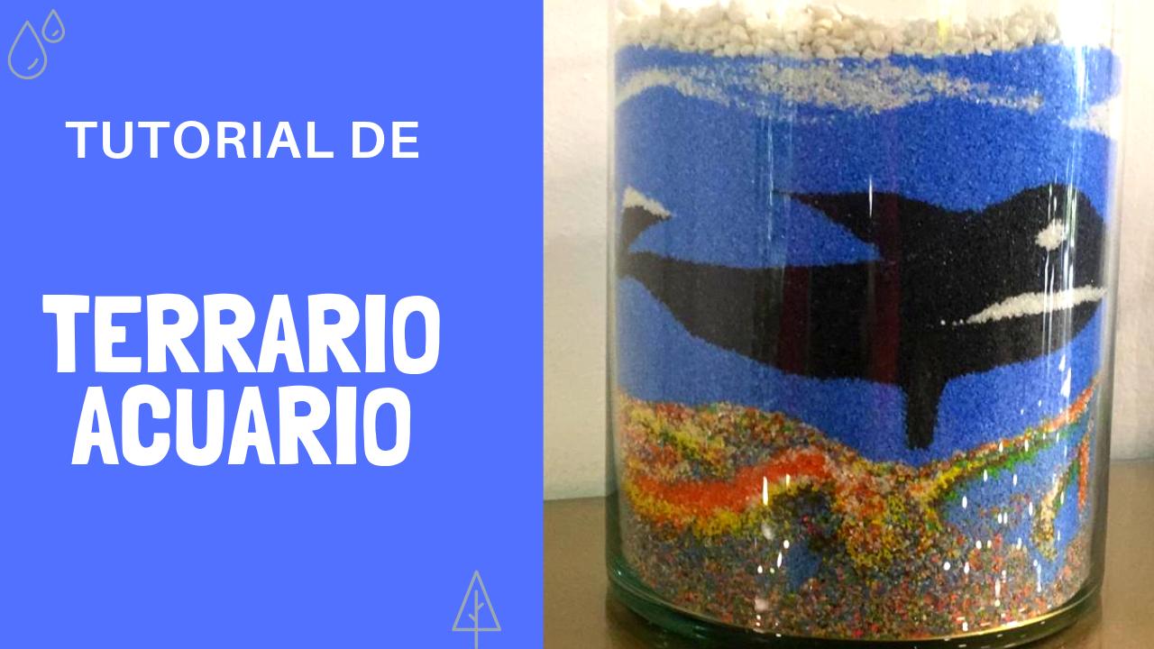 ¡Nuevo video en Youtube: Terrario de acuario!