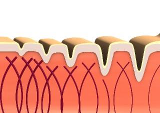 ¿Para qué es bueno el colágeno?: Todo lo que debes saber
