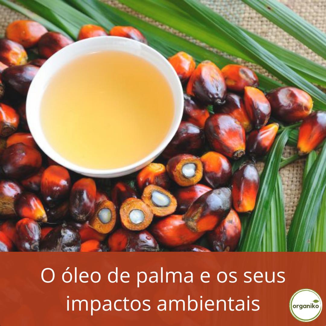 O Óleo de Palma e os seus impactos ambientais
