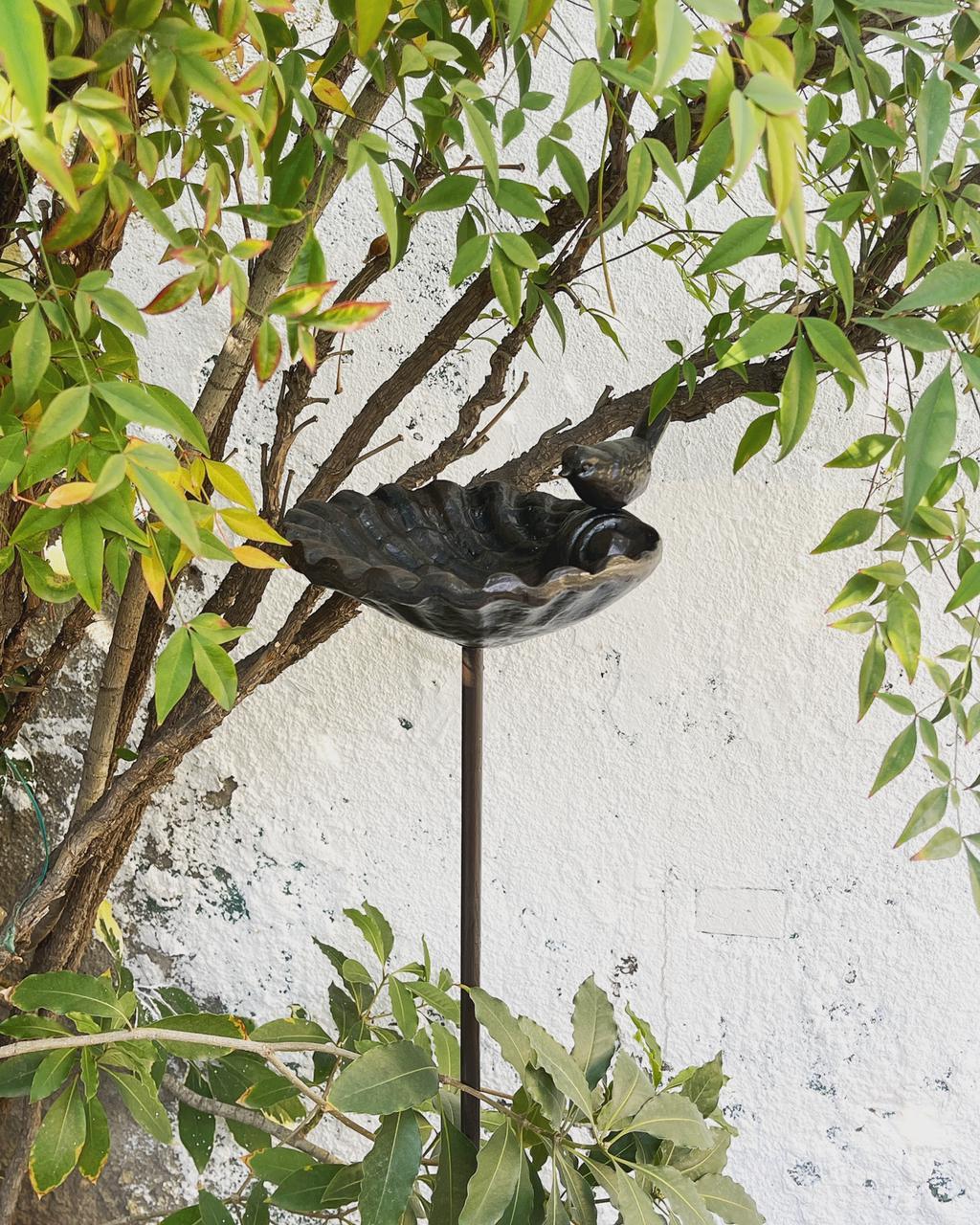 Bebedero forma concha pájaro