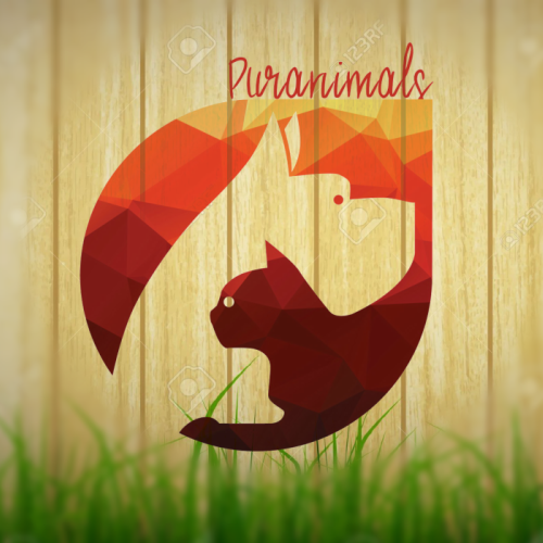 Logo PurAnimals