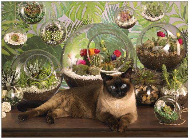 Terrarium Cat   Puzzle Cobble Hill 1000 Piezas