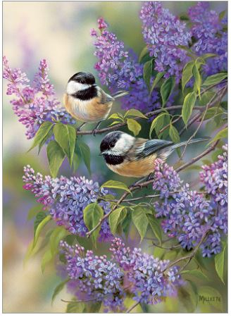 Chickadees And Lilacs   Puzzle Cobble Hill 1000 Piezas