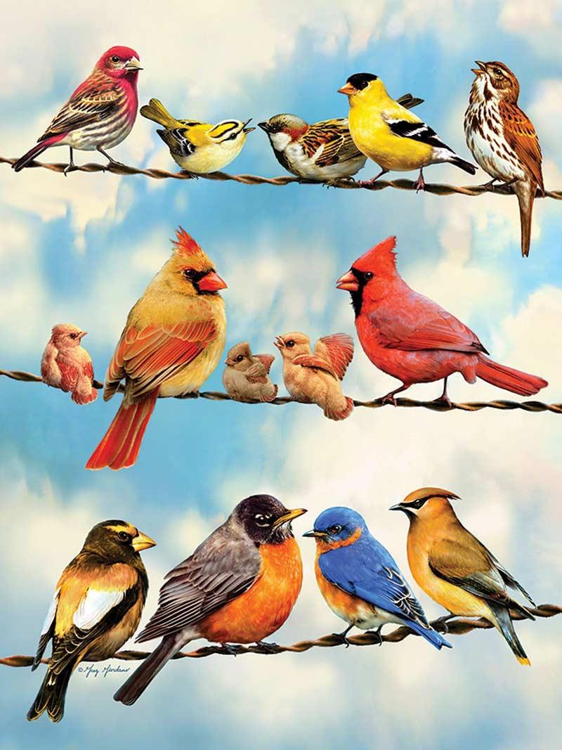 Birds On A Wire   Puzzle Cobble Hill 500 Piezas