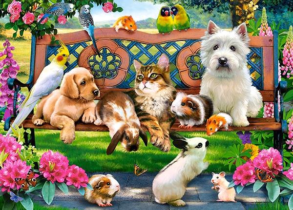 Mascotas en el parque   Puzzle Castorland 1000 Piezas