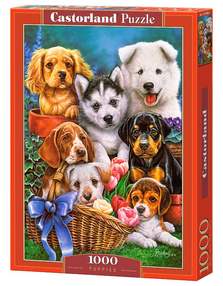 Cachorros | Puzzle Castorland 1000 Piezas