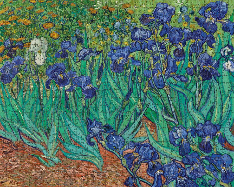 Irises   Puzzle Pomegranate 1000 Piezas