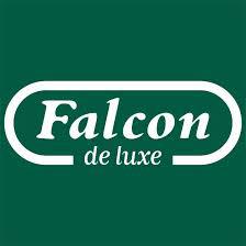 Puzzles Falcon