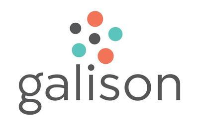 Puzzles Galison