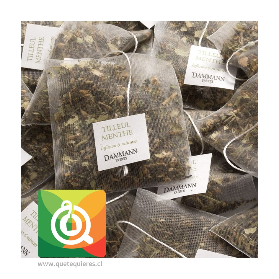 Dammann Infusión Menta - Tilleul Menthe / Lime Blossom Mint 24 Sachets - Image 3