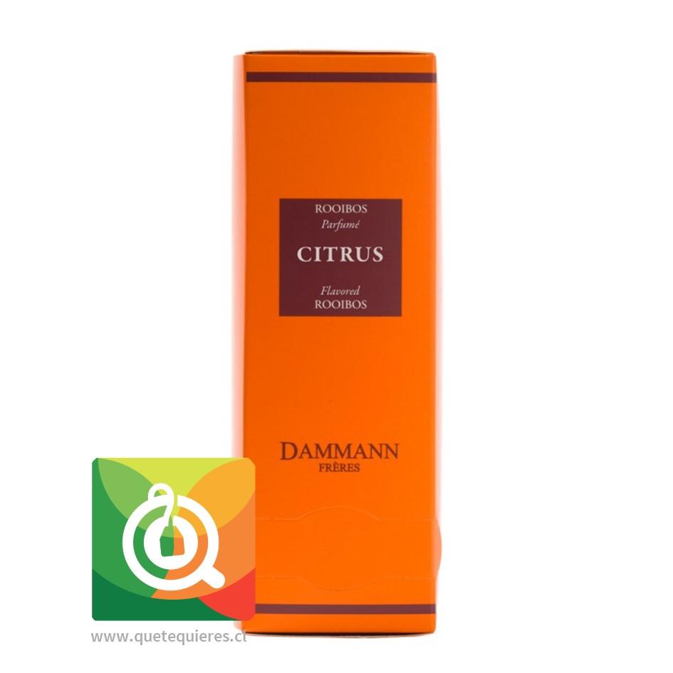 Dammann Infusión Rooibos Citrus 24 Sachets - Image 1