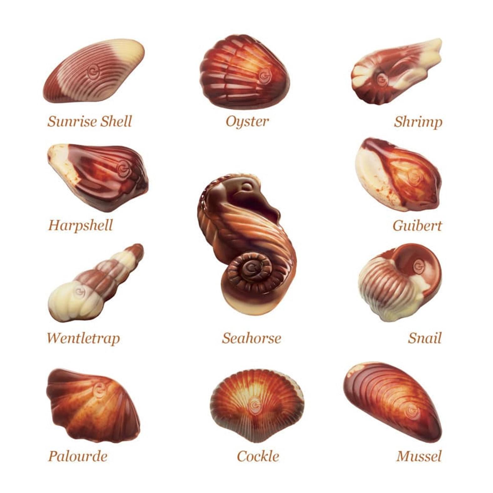 Guylian Bombones de Chocolate - The Original Sea Shell- Image 3