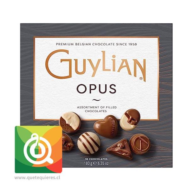 Guylian Bombones de Chocolate Opus Surtido- Image 1