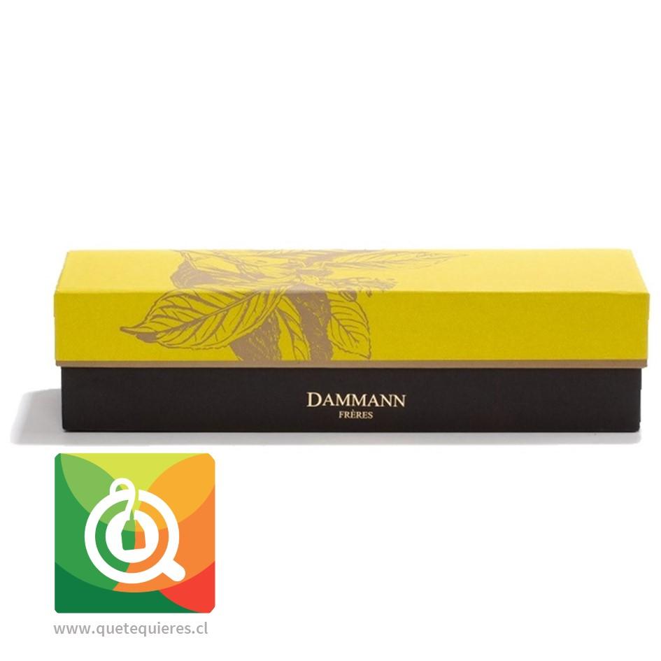 Dammann Caja de Tés 4 variedades + Infusor de Té - Éclats- Image 2