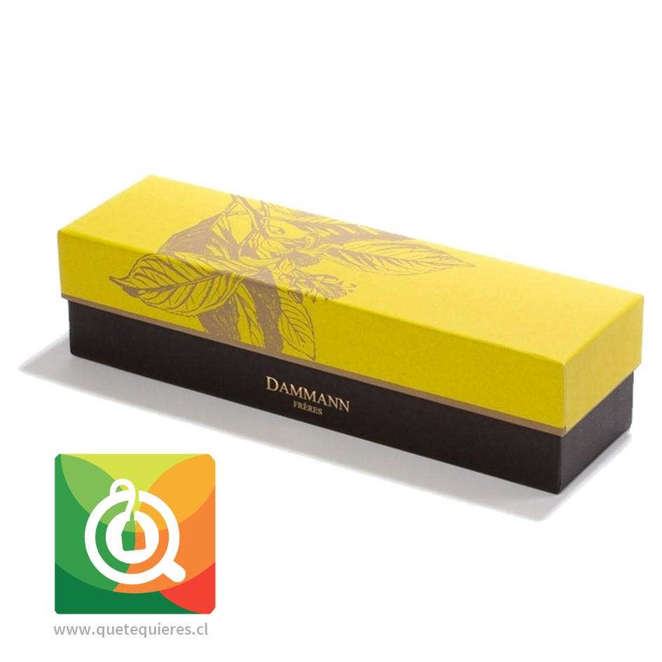 Dammann Caja de Tés 4 variedades + Infusor de Té - Éclats- Image 3