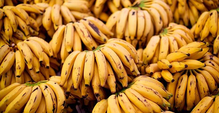 Banana da Madeira 1 kg