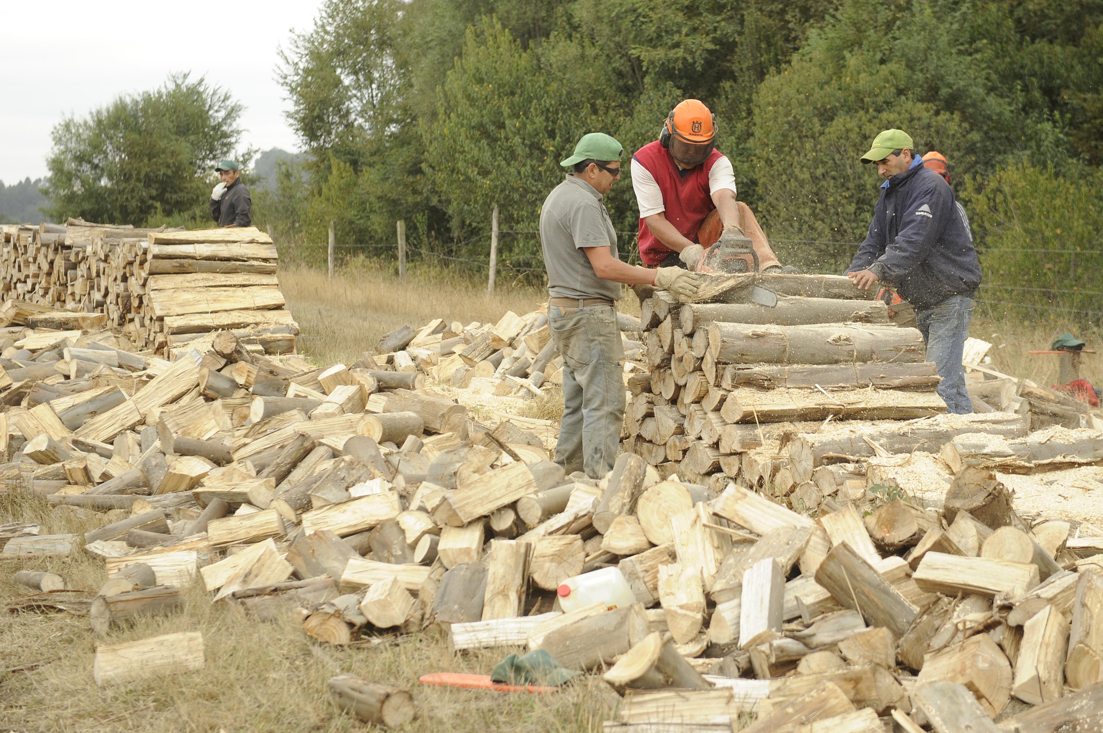 Trabajo nativo, un oficio sustentado en la calidad y la reinserción