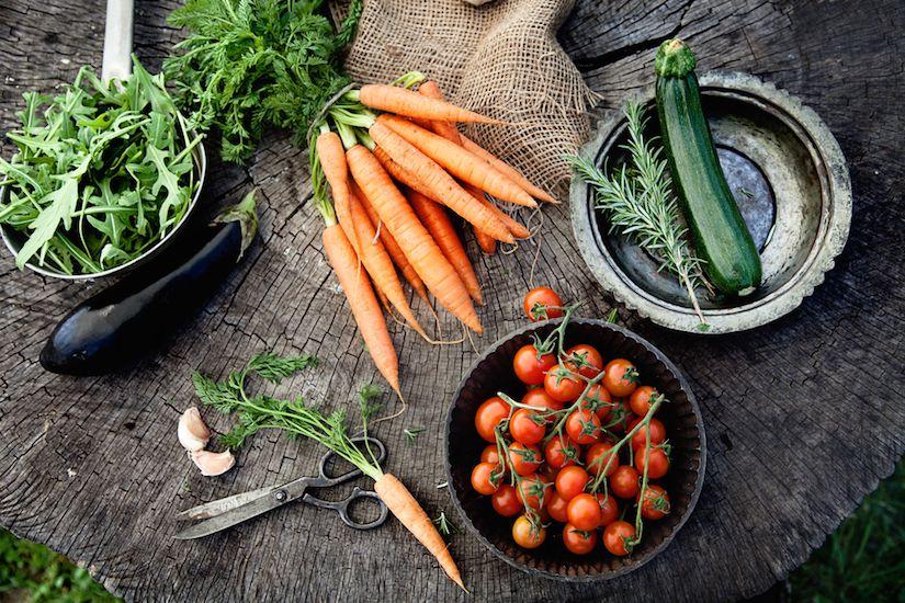 Artículo: Enfócate en lo que debes incluir en tu dieta