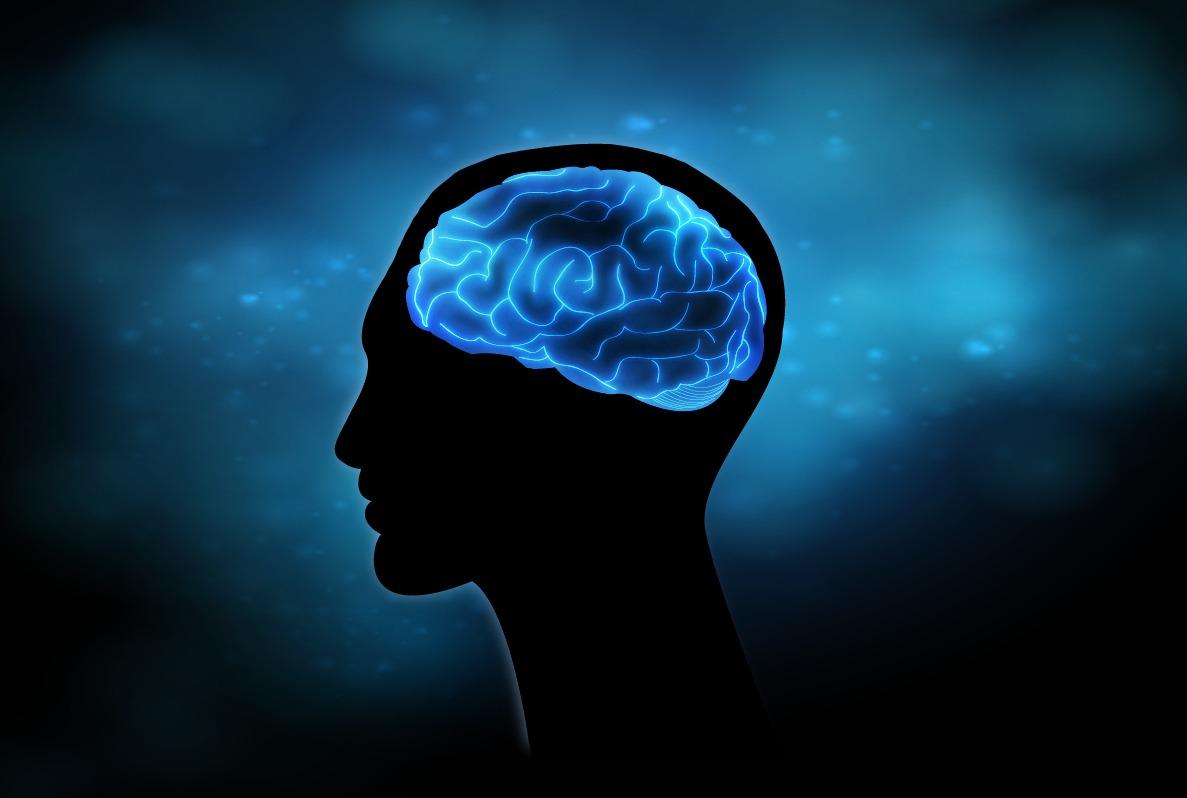 ¿Cómo favorecer la salud cerebral de forma natural?