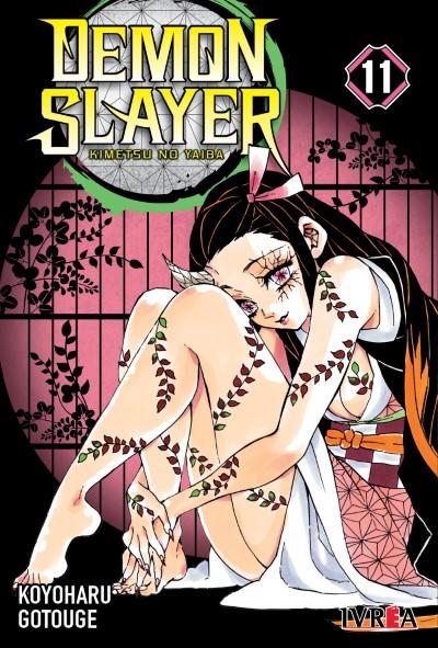 Demon Slayer - Kimetsu No Yaiba #11