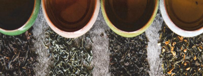 Elaboración del té