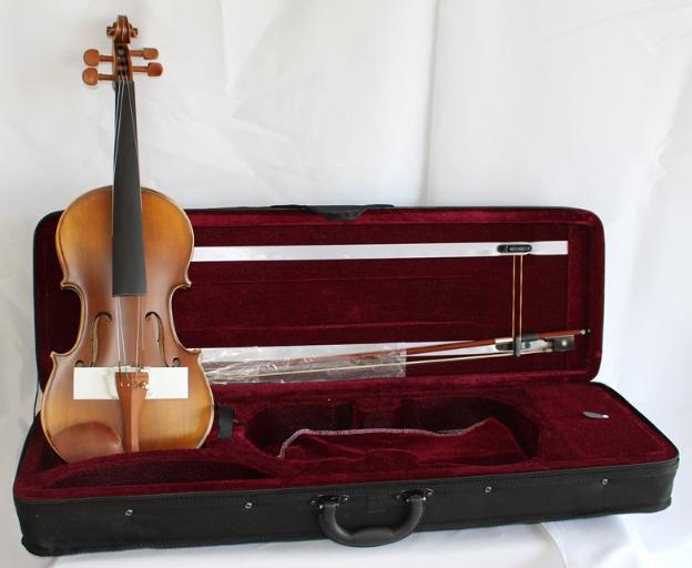 Violin Profesional 4/4 Cippriano con estuche + Accesorios