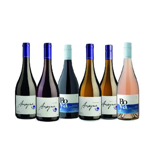 Selección Montaña 6 botellas