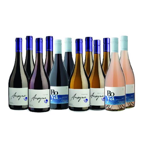 Selección Montaña 12 botellas