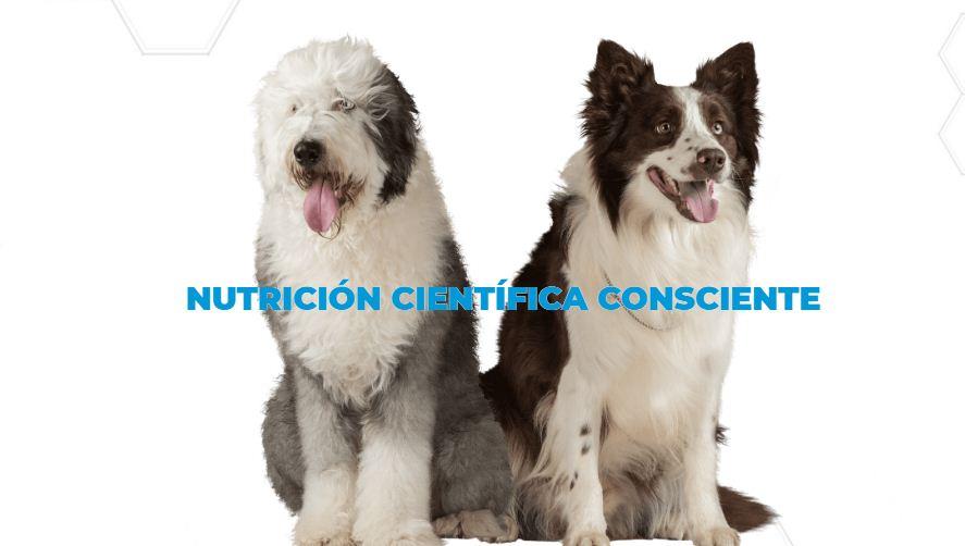 NUPEC PRODUCTOS DE ALTA CALIDAD PARA TUS MASCOTAS