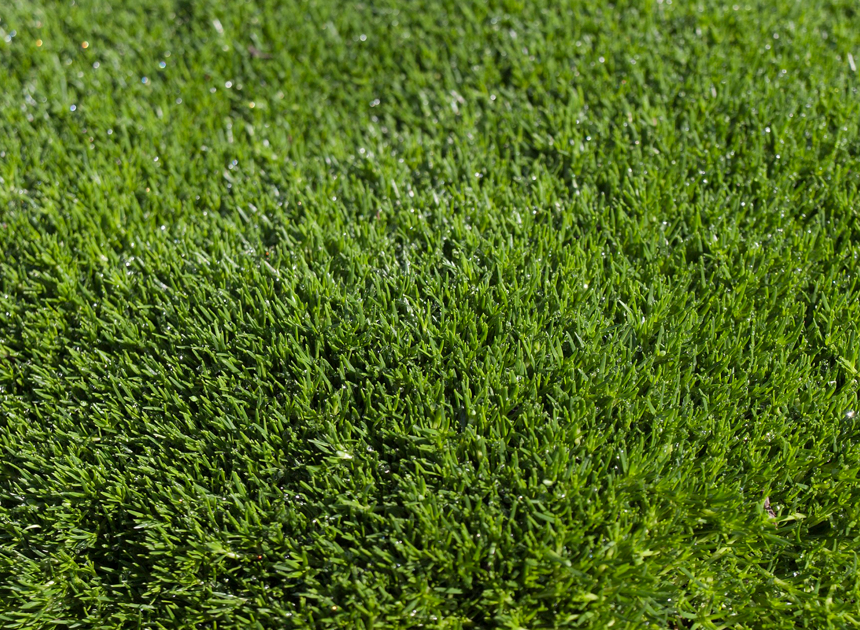 Pasto sintético natural y la economía de tus espacios