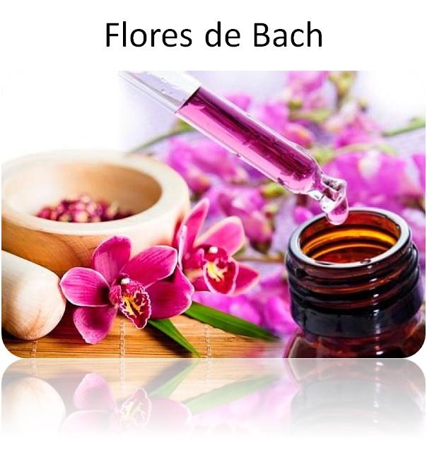 Aceite cuerpo hidratante verbena y almendras dulces masaje relajación