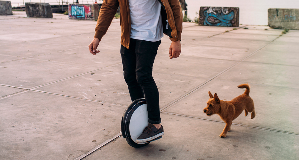 Hoverboard Segway by Ninebot One S1