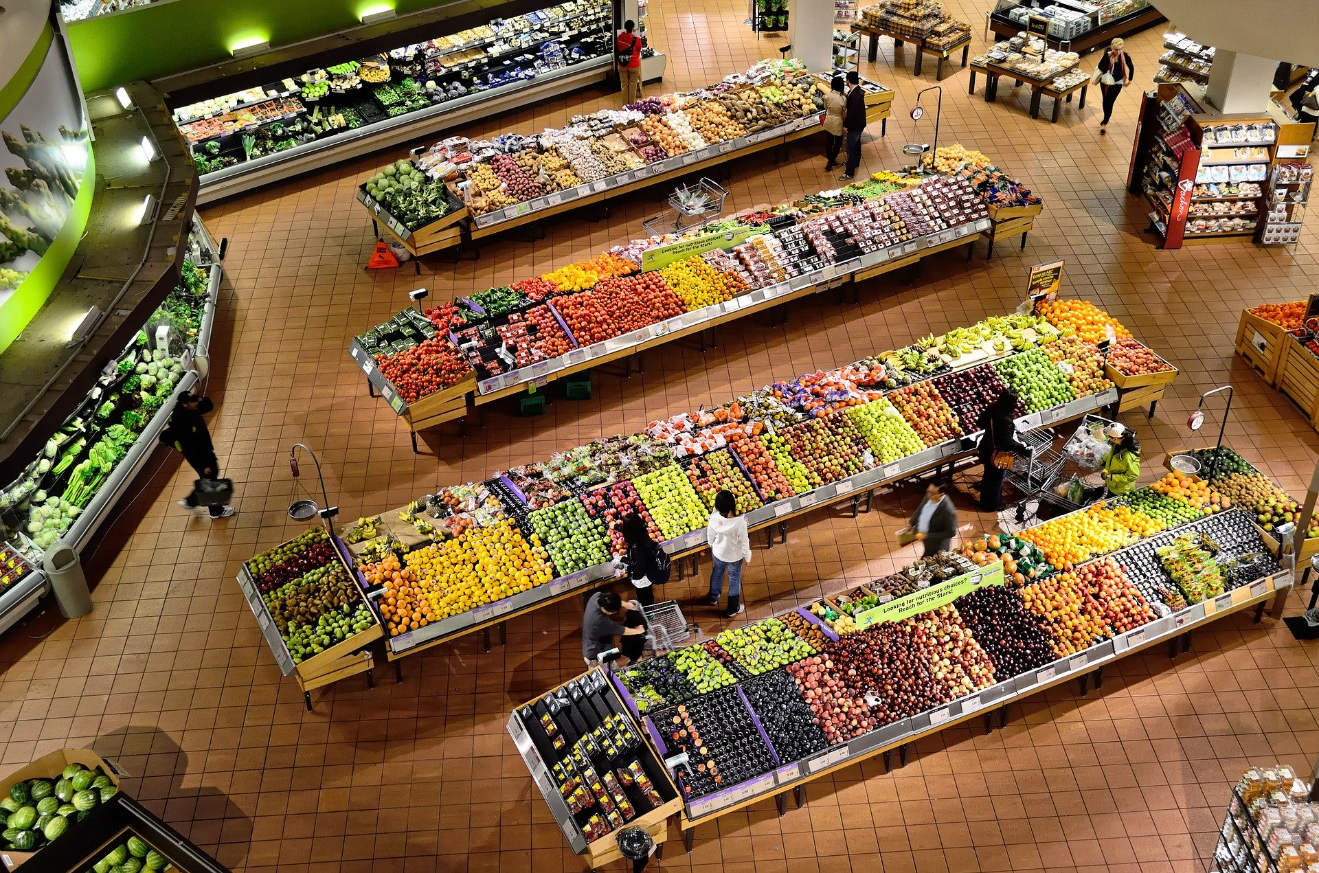 Macronutrientes e industria alimentaria