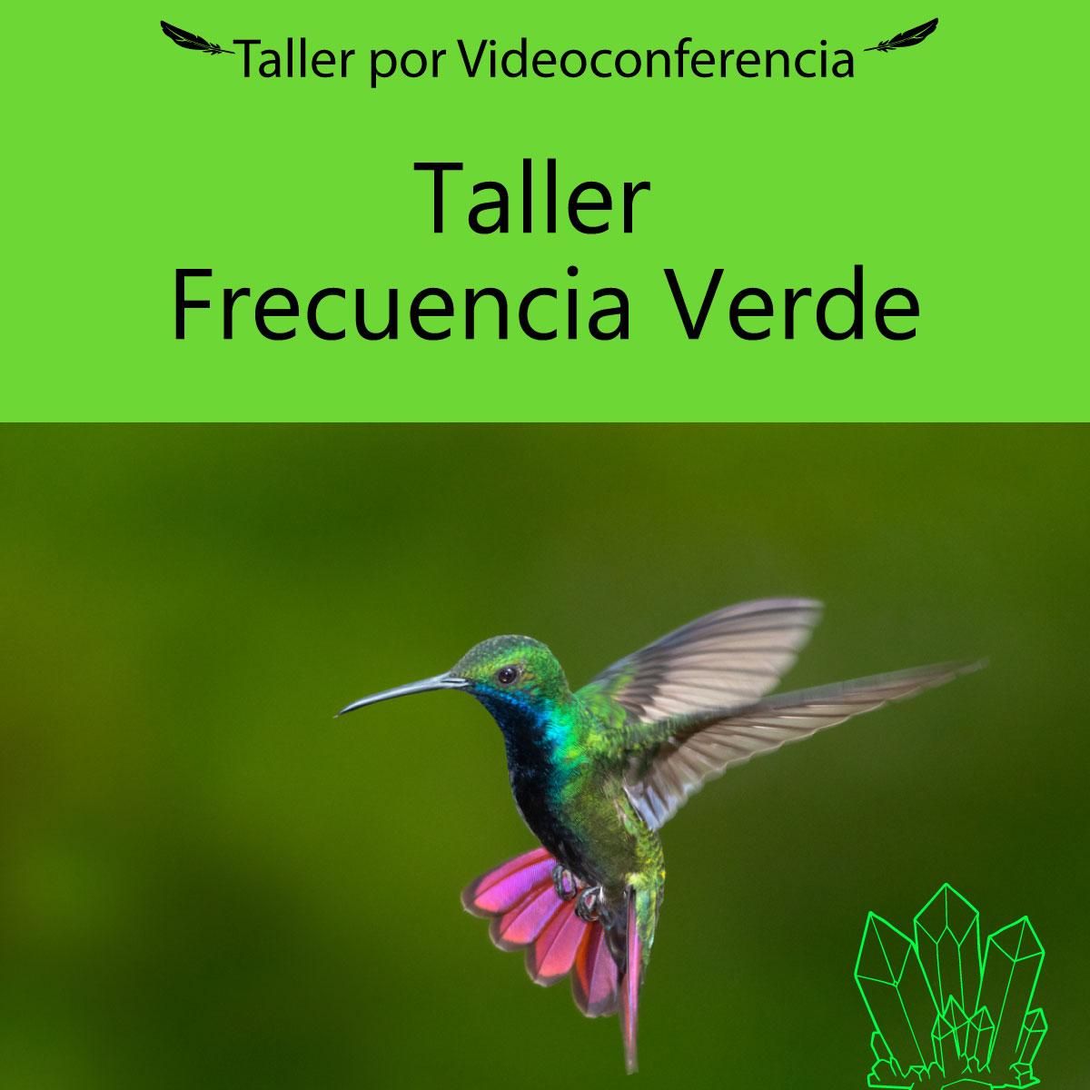Taller Virtual Frecuencia Verde